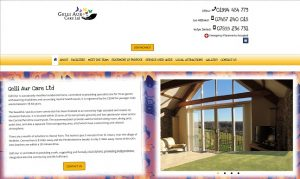 Gelli Aur Care website screenshot