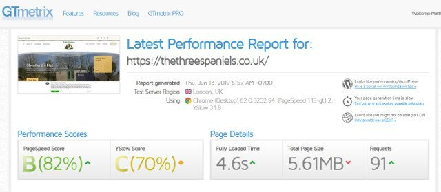 The Three Spaniels website test result screenshot