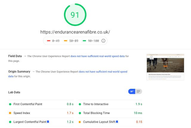 Endurance website Google Speed Score screenshot